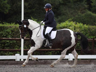 Mark Butler Foundation Series: Introducing the Seat, Leg and Rein Aids